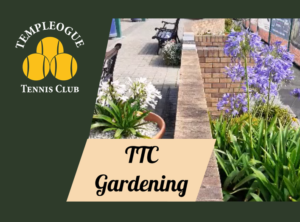 Gardening Corner 2